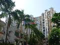 桂芳园五期小区图片