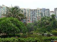 阳光棕榈园一期小区图片