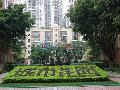 城市花园(福田)小区图片