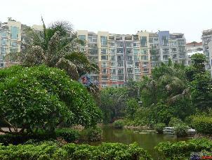 阳光棕榈园