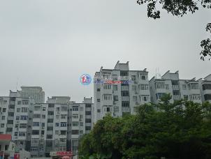 红荔村住宅区