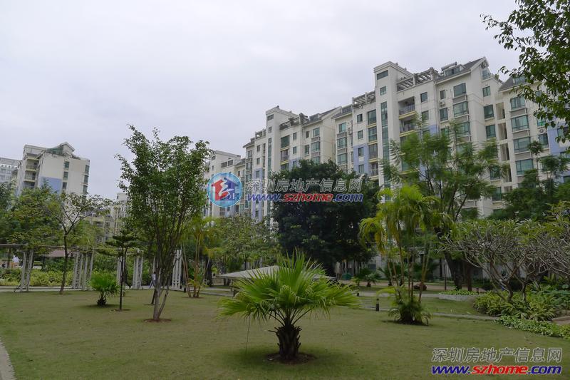 小区地址龙岗区龙城街道愉龙路与爱美路交汇处东侧开发商深圳市建设控