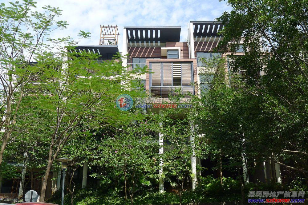 中海大山地楼王独栋别墅,600万豪装,前有聚宝盆,后有靠山