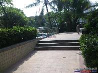 布吉中心花园小区图