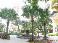 桂芳园八期小区图