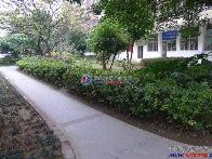 长城一花园小区图