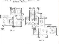中海九号公馆户型图